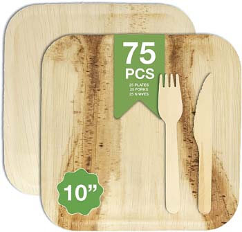 10. The Giving Plate Co - Palm Leaf Plates 10 inch